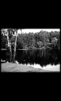 Пейзаж № 2