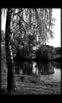 Пейзаж № 8