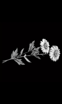 Гравировка цветов на памятник № 1