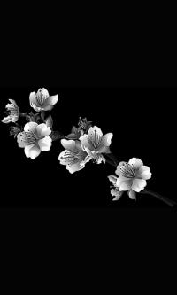 Гравировка цветов на памятник № 16