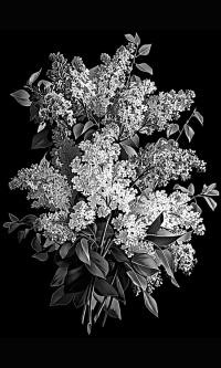 Гравировка цветов на памятник № 23