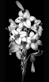 Гравировка цветов на памятник № 12